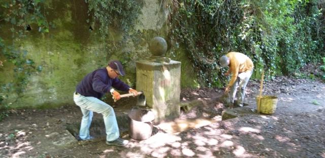 Retirada de terra de la bassa de la font